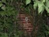 jardin-secreto2